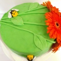 Gardeners Birthday Cake With Real Gerberas