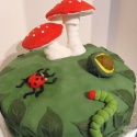Toadstools, caterpillars, conkers and wildlife for a 50th wedding anniversary